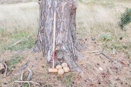 Vintage Croquetspel
